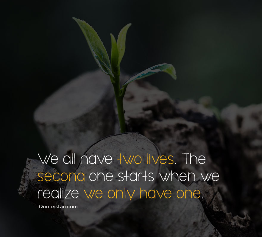 Image result for we have two lives and the second begins when we realize we only have one