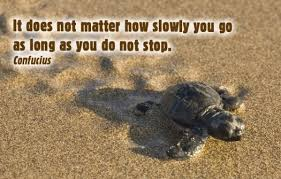 Image result for tortoise and the hare quote