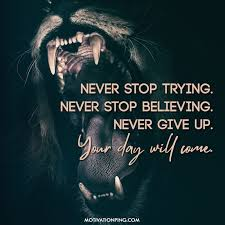 """Image result for Never stop dreaming, never stop believing, never give up, never stop trying, and never stop learning."""" """"If I don't succeed, I will try again and never stop trying. When I succeed, I will again explore new opportunities"""